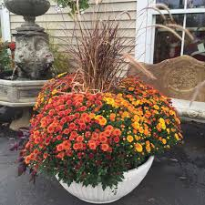 Fall Outdoor Planters