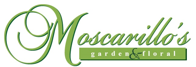 Moscarillo's Garden Shoppe
