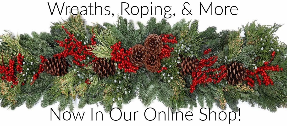 Christmas now in online shop